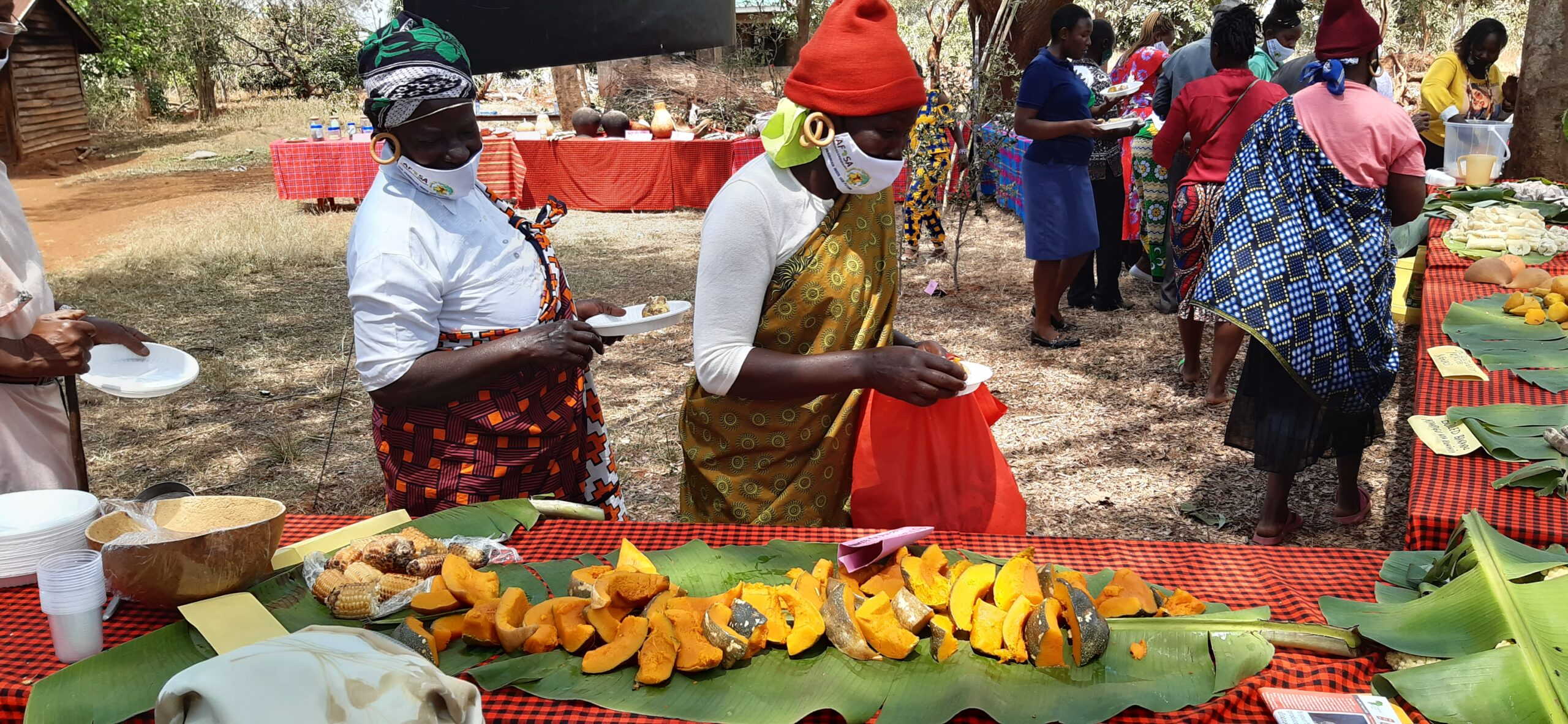 AFSA Food and seed fair in collaboration with GBIACK